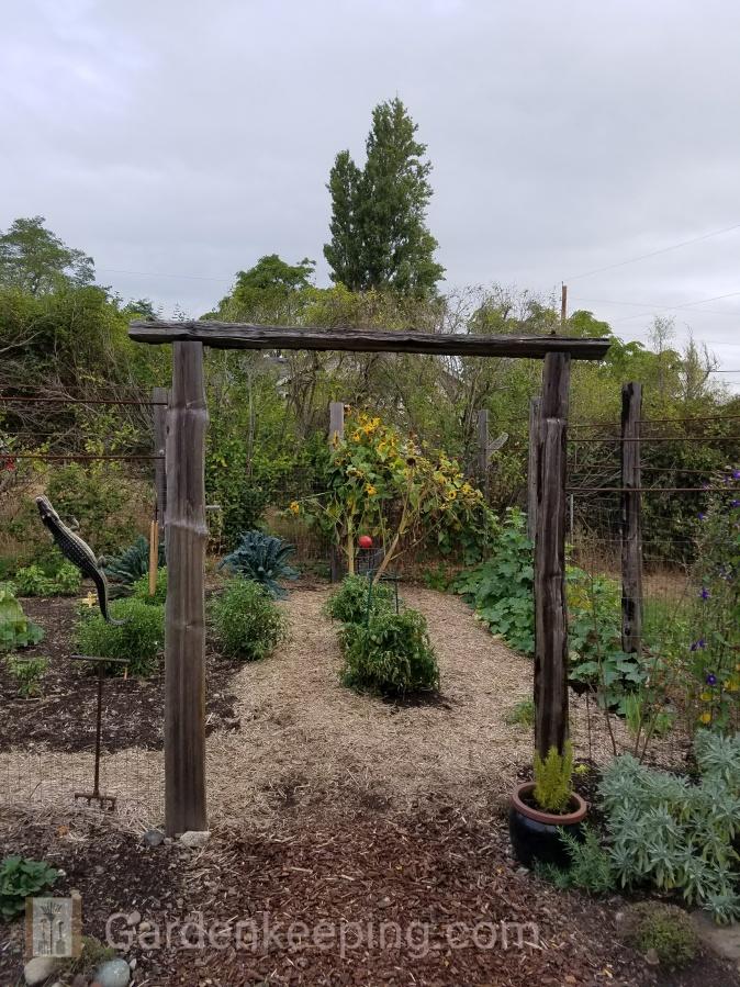 Vegetables, my garden's innersanctum.