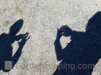 Anne and Lori create crescents with their finger shadows.