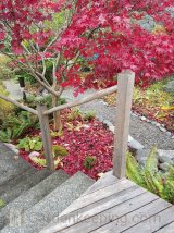 Just like the lawn, the leaves can be cleared off the pathways and onto the garden beds.