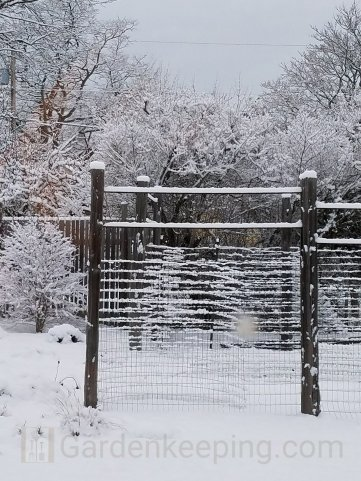 The lines of the fence are highlighted by snow.