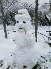 Enough snow on christmas to make a snowman!