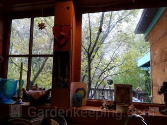 Looking out the kitchen window. A Japanese Maple grows up through the deck!