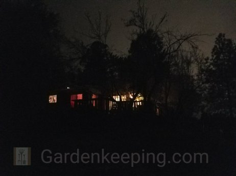 The cabin and trees at night.