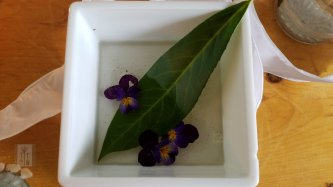 Collected rain water with laurel leaf and pansies.